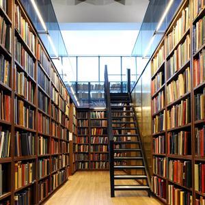 Библиотеки Шалинского